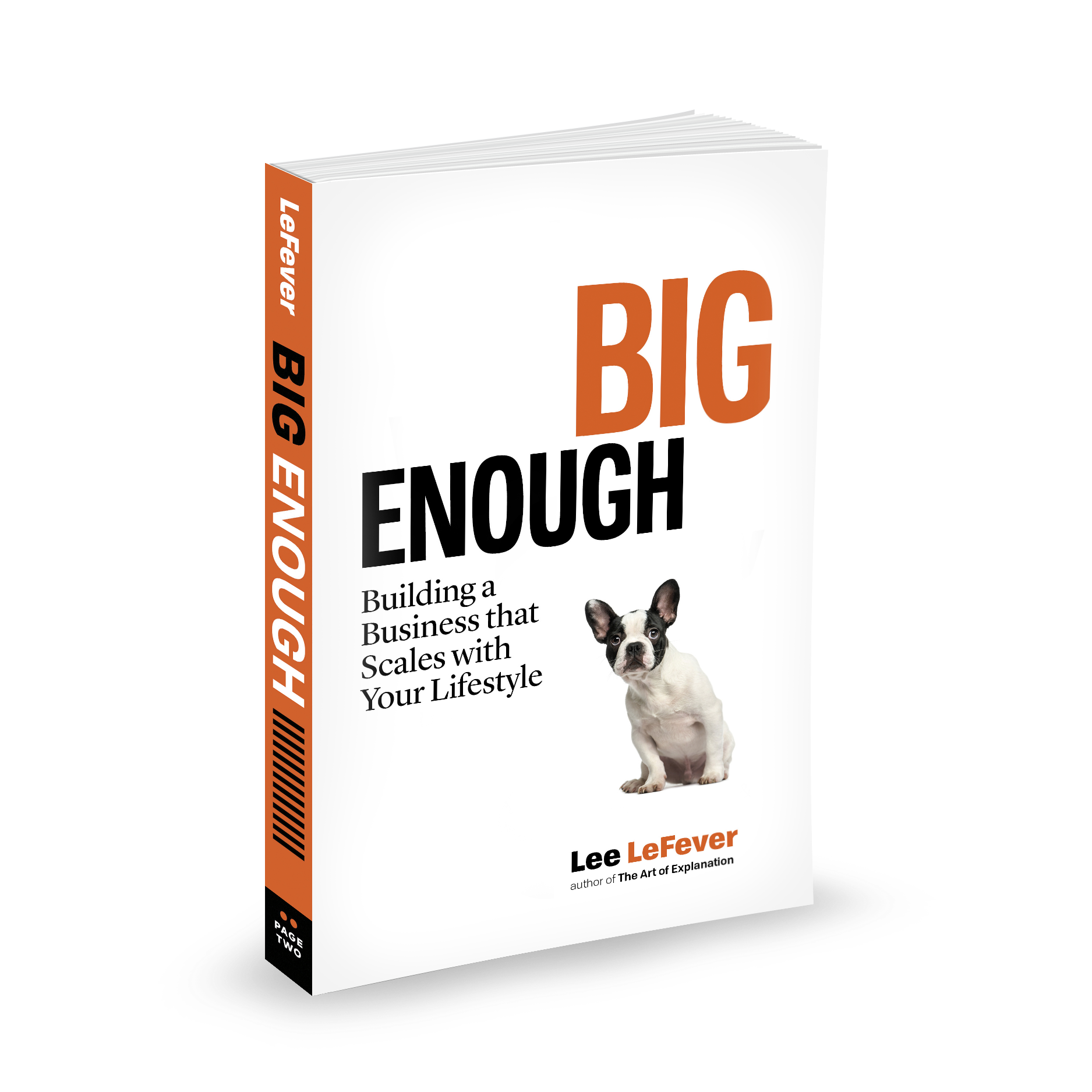 Big Enough Book Cover
