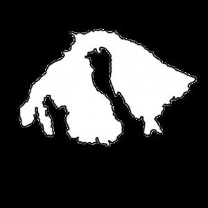 Orcas Island Shape