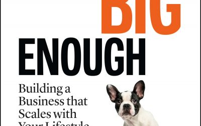 Final Covers of BIG ENOUGH
