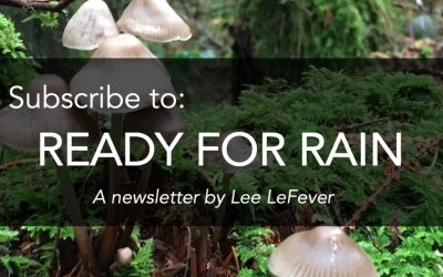 What is the Ready for Rain Newsletter About?